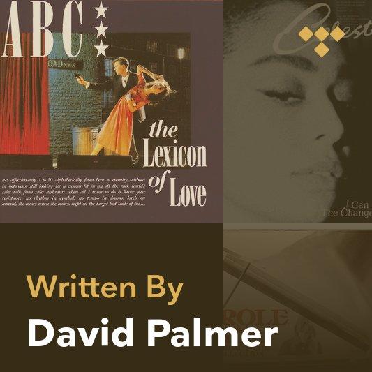 Songwriter Mix: David Palmer