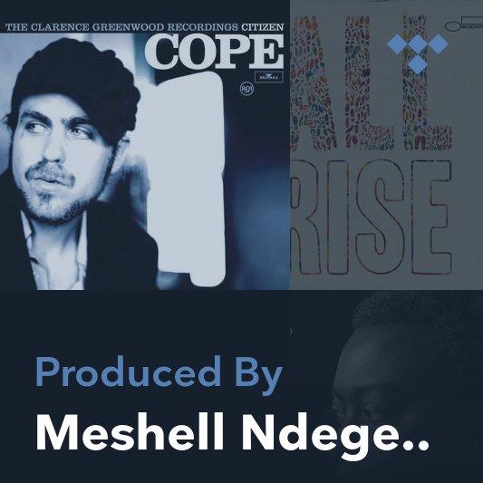 Producer Mix: Meshell Ndegeocello