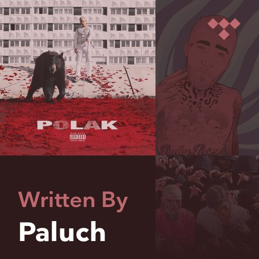 Songwriter Mix: Paluch
