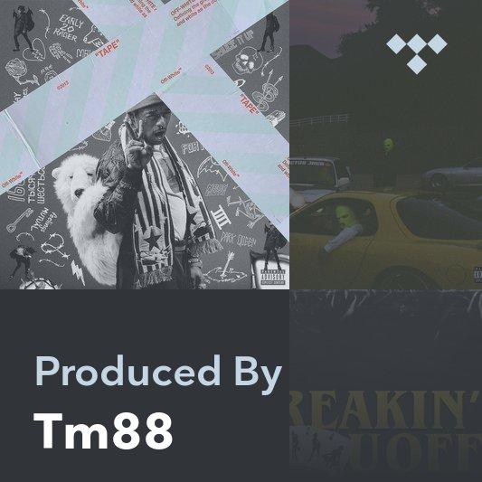 Producer Mix: Tm88