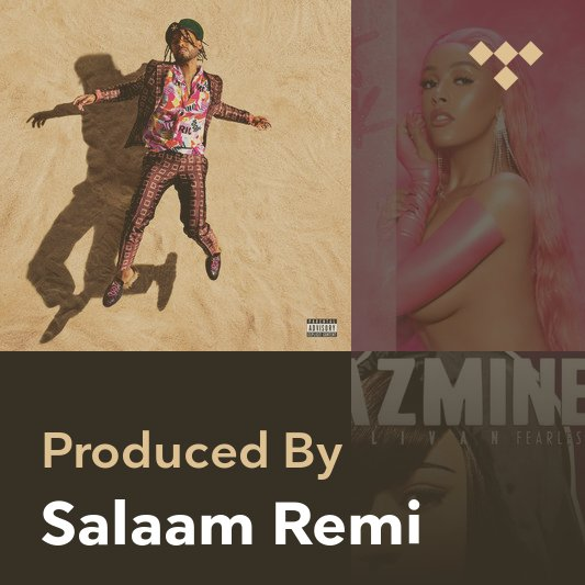 Producer Mix: Salaam Remi